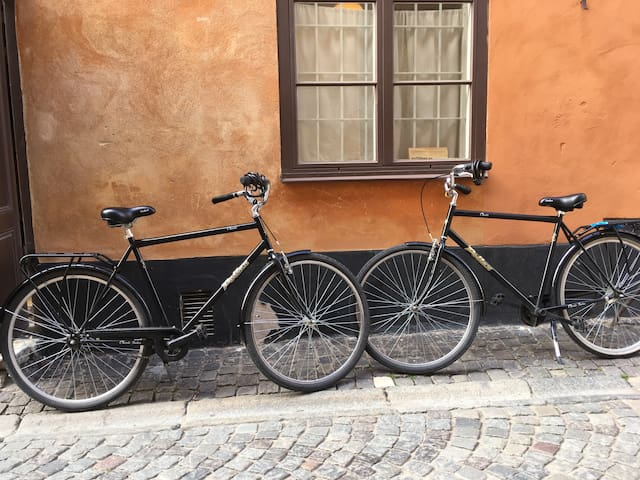 Two bicycles are included in the rent