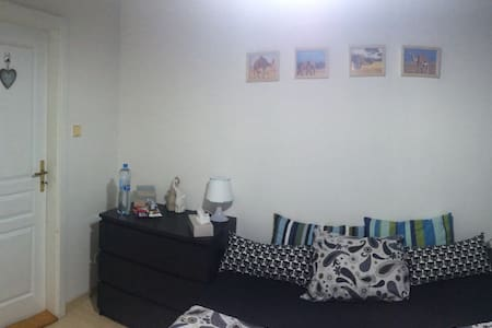 Nice room with balcony and 2 bathrooms! - Praha