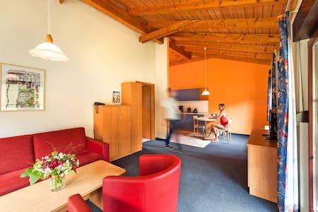 45 m² Ferienhaus im TRIXI-PARK - Großschönau