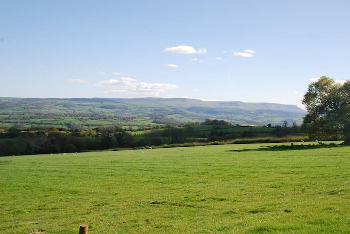 The Cefn Shepherd's Hut - Herefordshire - Hut