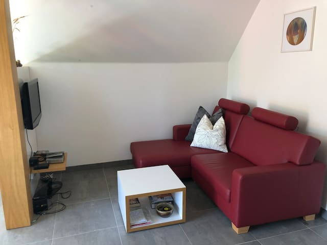 sofa with tv