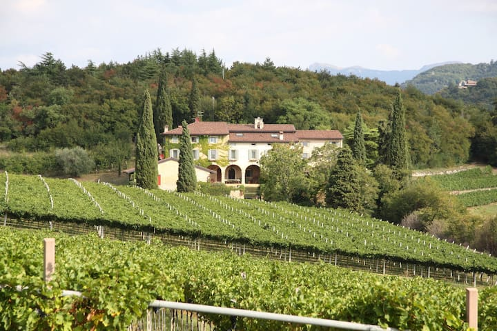 Beautiful Villa in Valpolicella - NEW!!!! - Werona