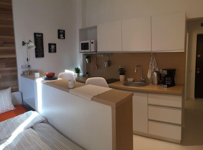 Classy Scala Studio - Bucharest - Apartment