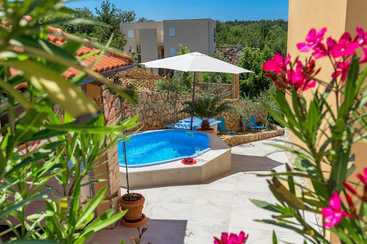 House with Mediterranean garden and mini pool 2