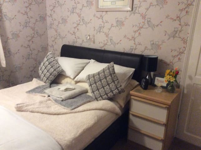 Good sized Double Room in friendly house.