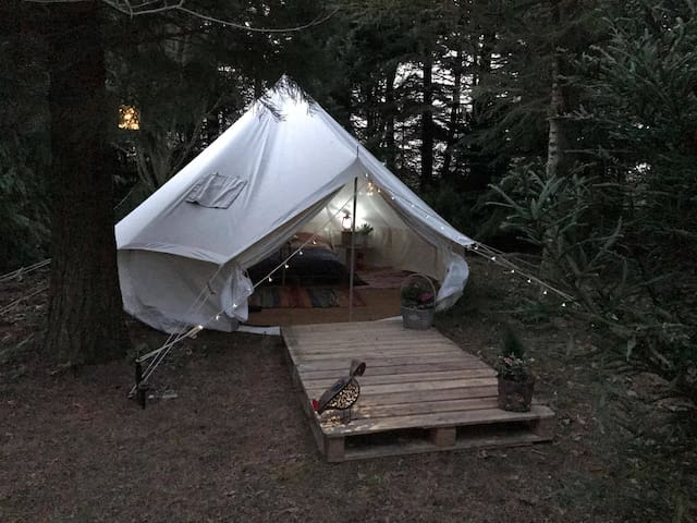 Tree Hugger Tent (Whitby) - Tranmire - Stan