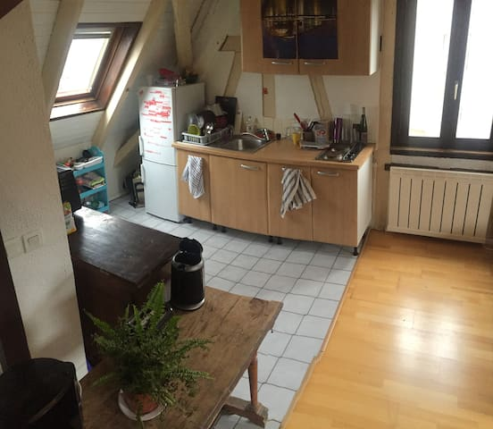 Duplex lumineux proche Strasbourg, jardin barbecue - Schiltigheim - Flat