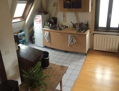 Duplex lumineux proche Strasbourg, jardin barbecue - Schiltigheim - Apartamento