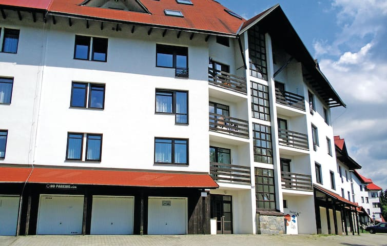 Holiday apartment with 1 bedroom on 44 m² in Harrachov