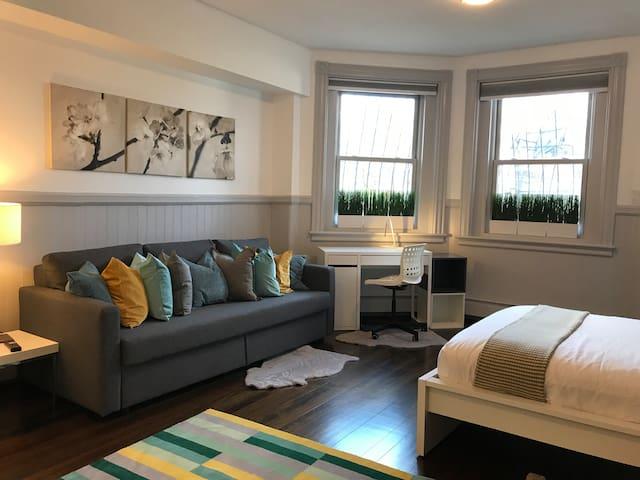Back Bay Apartment near MIT and Newbury Street - G