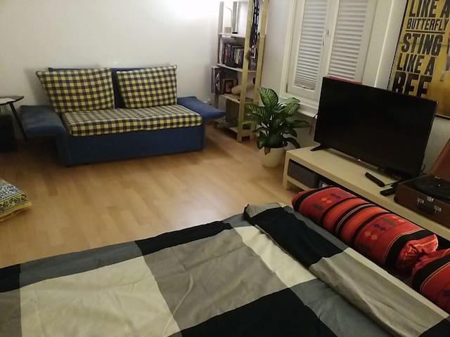Big apartment in the city center - Dornbirn - Byt