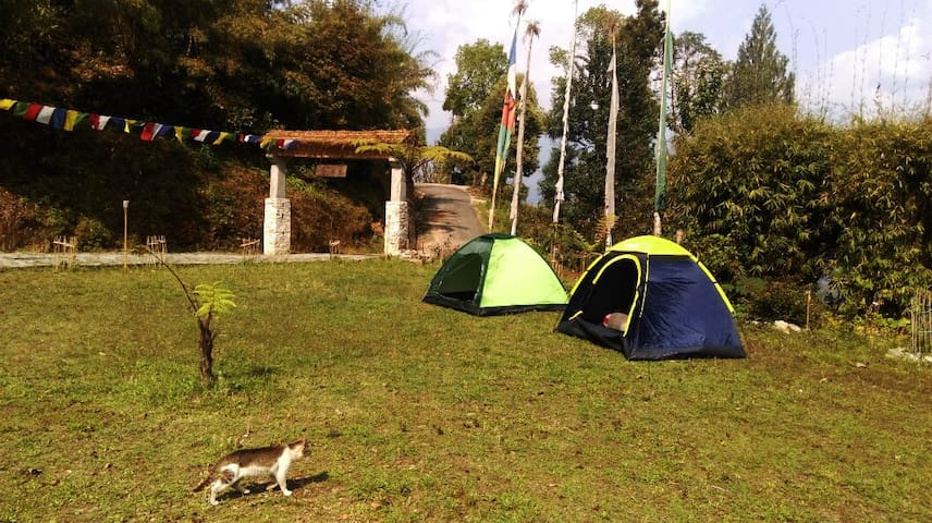 Tent for rent at Retreat 108 - Pelling