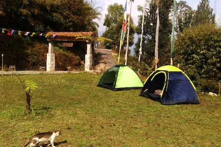 Tent for rent at Retreat 108 - Pelling - Stan