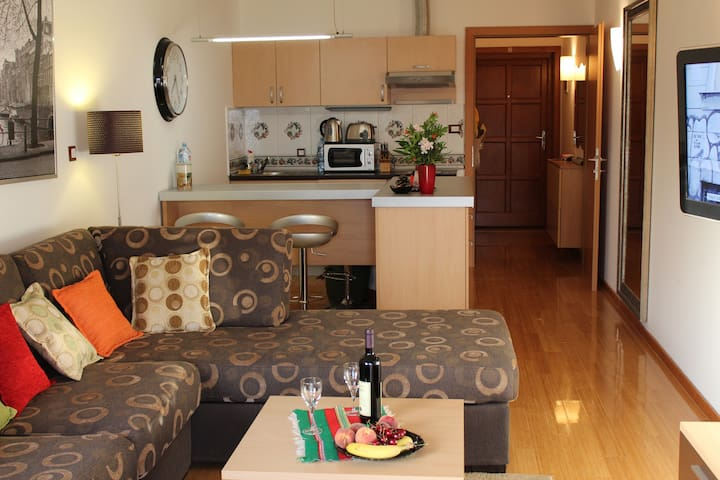 Studio Apartment - Zanjice beach