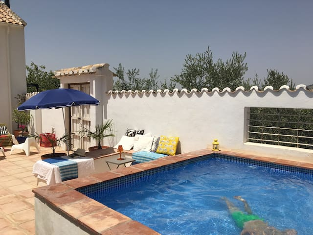 Splash pool in private courtyard; relax in the water, the shade or sun.