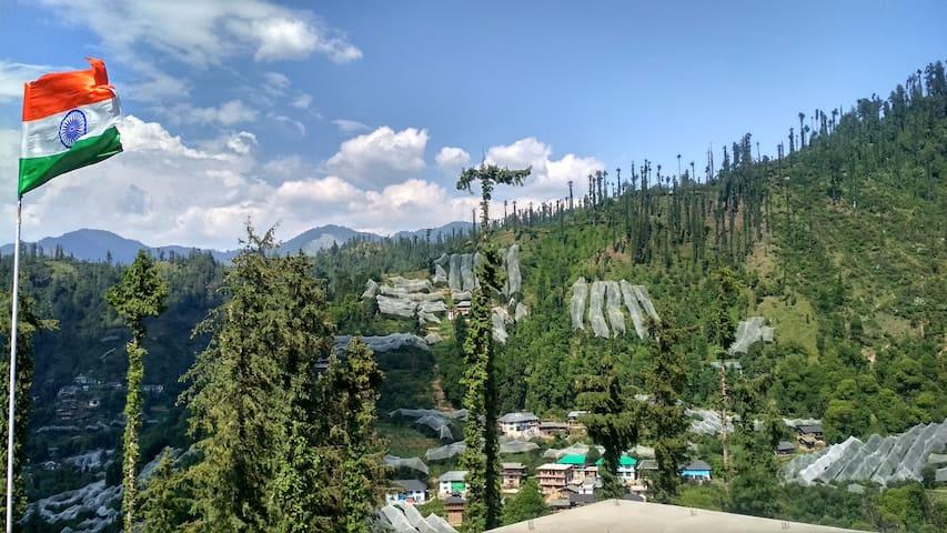 Wildlife  Homestay,Janjehli Mandi Himachal Pradesh