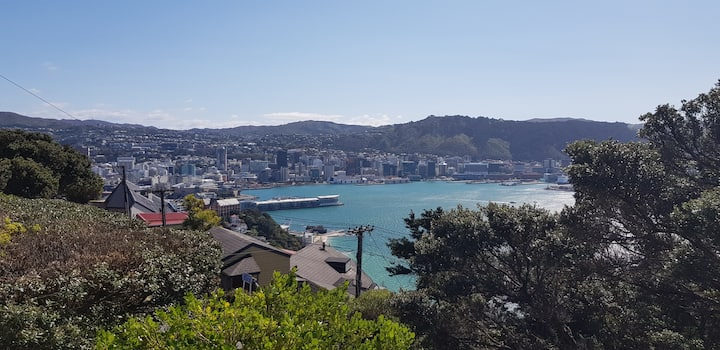 Cosy and Cute Studio on the top of Oriental Bay