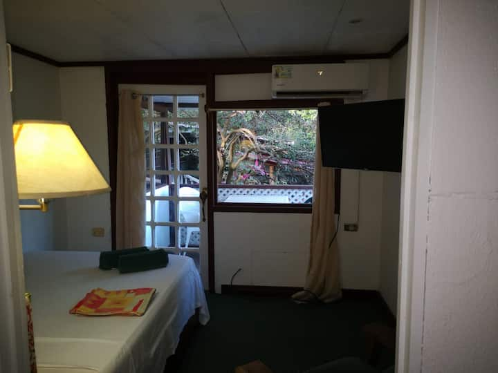 Garden-view room with two beds
