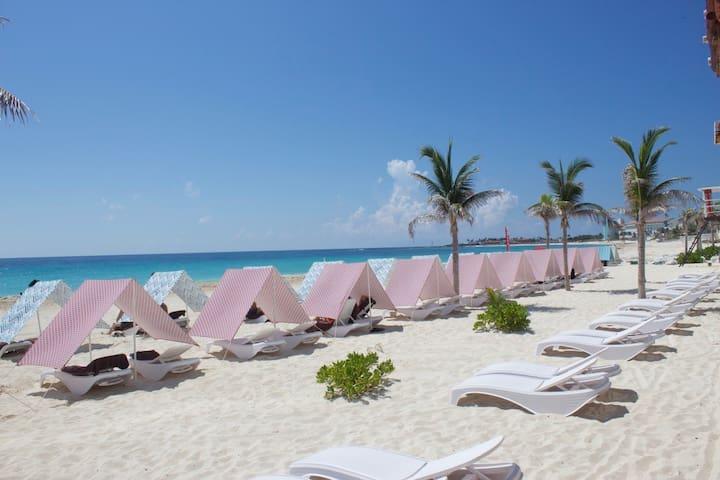 Beach Front Condo Cancun / Dog Friendly