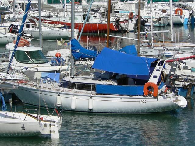 Voilier au grand port d'Aix les Bains - Aix-les-Bains - Barco