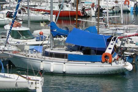Voilier au grand port d'Aix les Bains - Aix-les-Bains