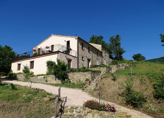Agriturismo Carincone Italy - Pergola - Bed & Breakfast