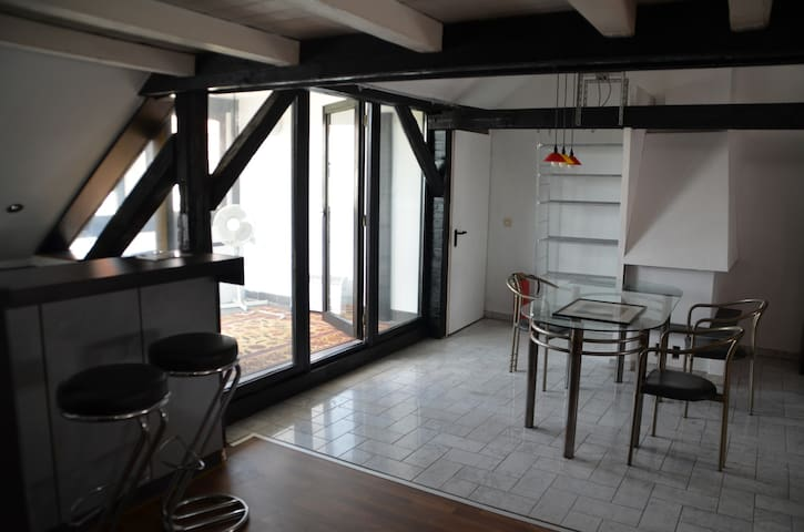 DG-Wohnung mit Sauna - Hildesheim - Apartament