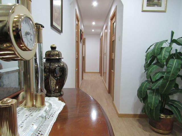 Acogedor apartamento en el Pirineo aragonés.