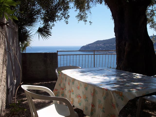 Le coin jardin avec vue sur la mer