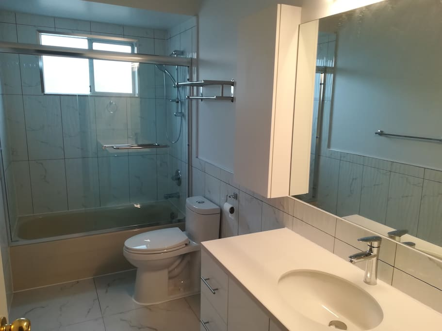 Brand new bathroom 1