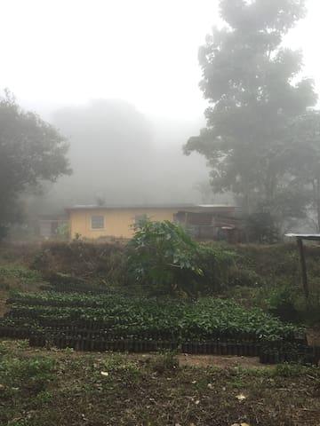 Coffee Farm Experience, near Tegucigalpa - Guaimaca - Casa