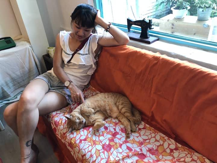 三芝淺水灣芝柏Meo-woo貓旅行民宿(雙人套房+豐盛早餐2份)
