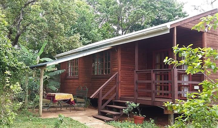 Yebo Art Cabin