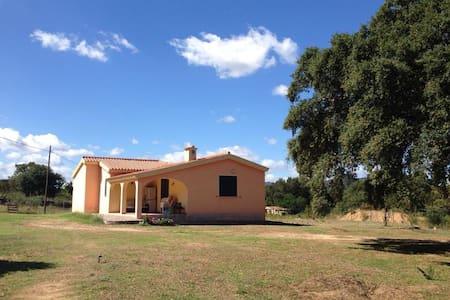 Monolocale vicino s.Teodoro - Ovilò - Haus