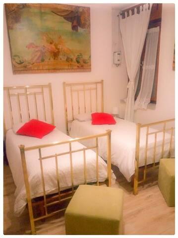 La camera ha 2 Letti Singoli. (The room has two single beds)