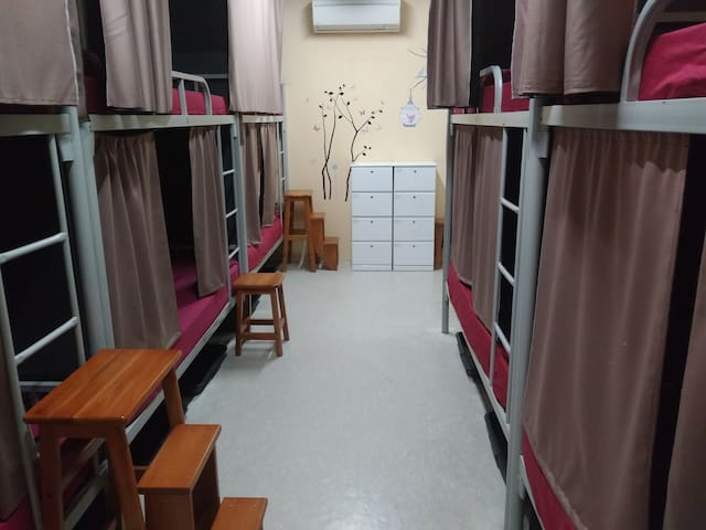 1-bed in 10-Bed Mix Dormitory..