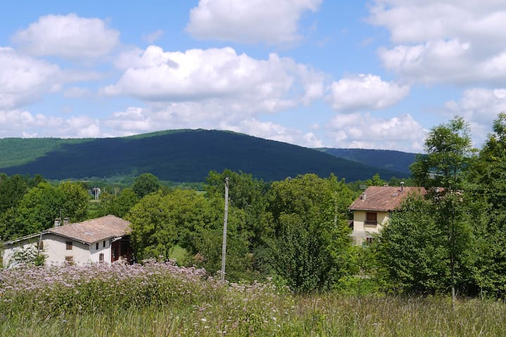 Spacious vacation home, Pyrenees - Bénaix - Talo