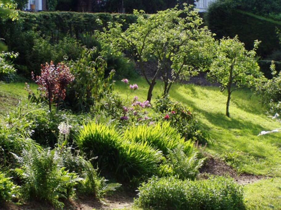 Le Gîte Ciel : le parc au pied de la villa Marguerite.