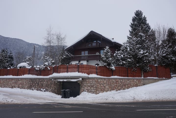Apartment with mountain lake view! - Vorderthiersee - Apartemen