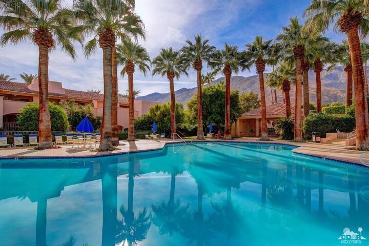 Palm Springs Oasis