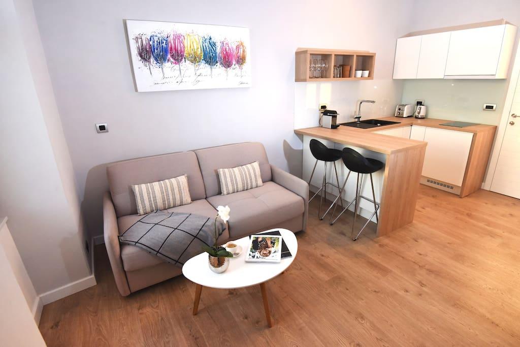 Studio Living Area and Kitchen