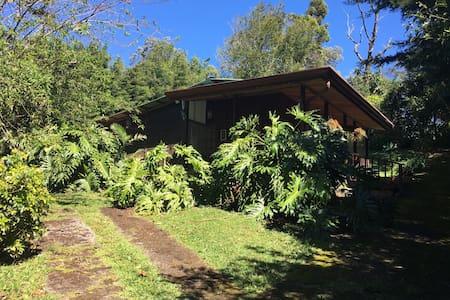 Cabin near Poas Volcano 2 bed/1bth - Fraijanes - Chatka