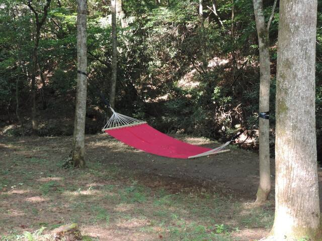 Hammock by the Creek - You snooze, You WIN