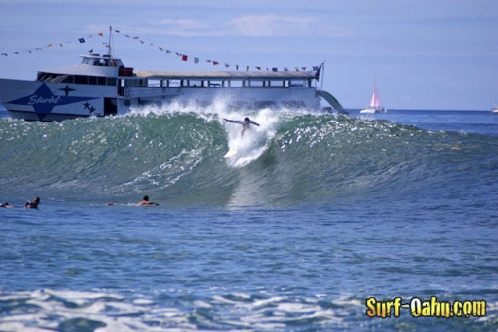 5 minute walk to kaisers famous surf break 2 Costco wave storm surfboards available complimentary for guest...for beginners  surf lessons available 1 hour complimentary free... We want to share the greatest sport in the world experience true aloha