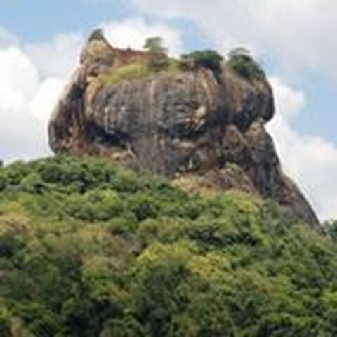 Nelu Villa Sigiriya Sri Lanka