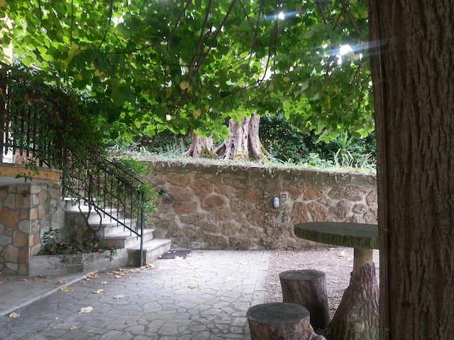 Delizie nel verde - Roma - Pis