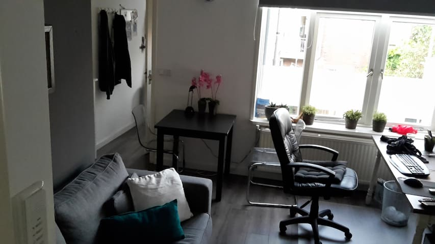 Nice apartment close to the city centre of Utrecht - Utrecht - Apartment