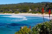 Visit Mermaid Crossing, just a short walk to beautiful Carmel Beach