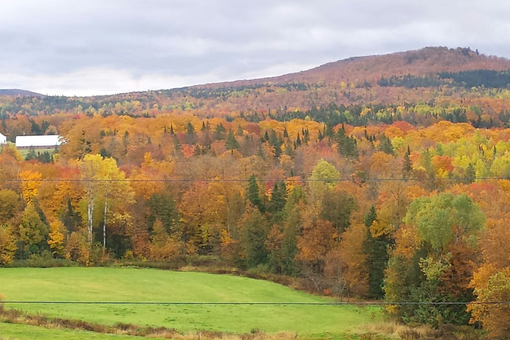 Peak foliage this week and great weather predicted.