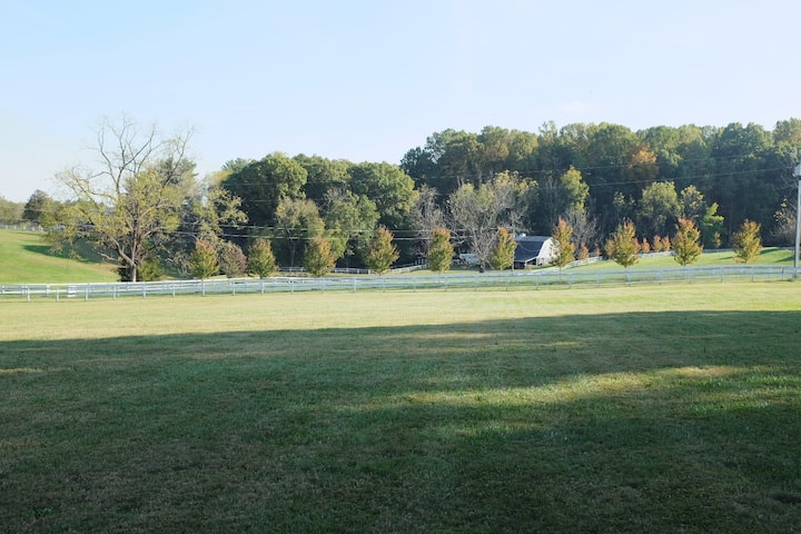 Whistling Acres - Entire 5 BR/4BA house in Clifton